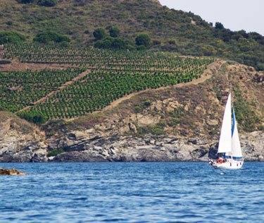Sardinia Wine Tour